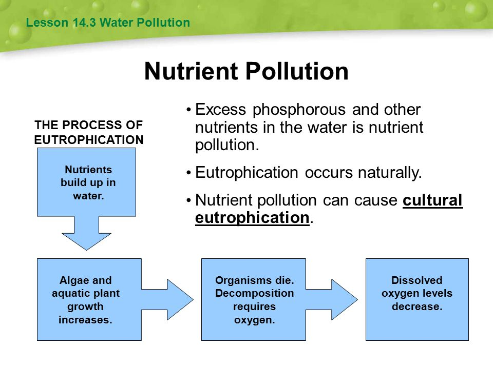 Nutrient Pollution Excess phosphorous and other nutrients in the water is nutrient pollution.