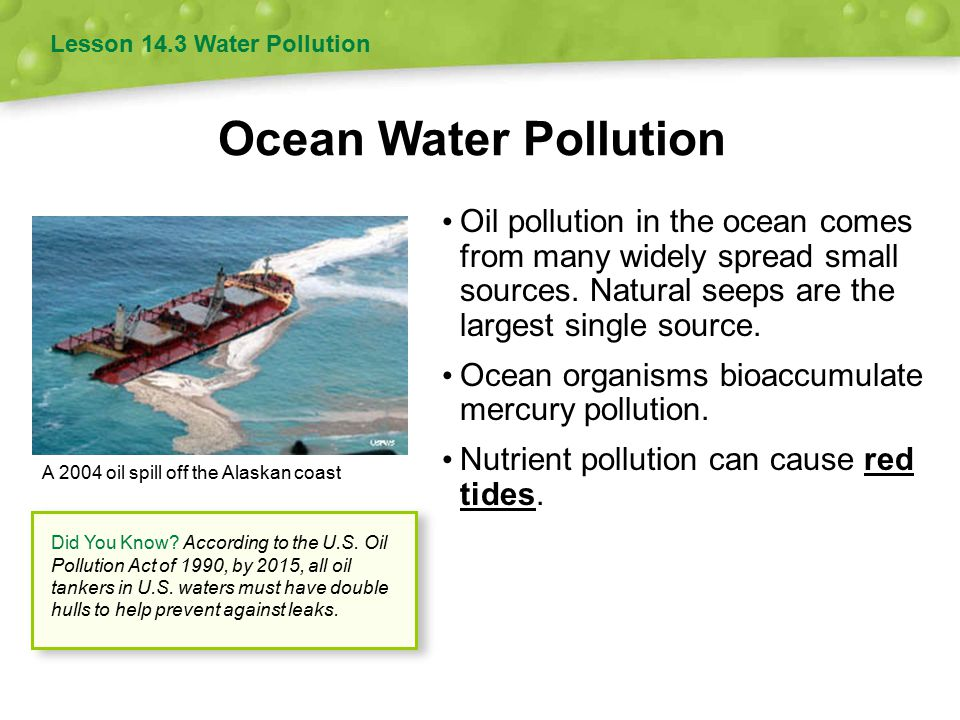 Oil pollution in the ocean comes from many widely spread small sources.