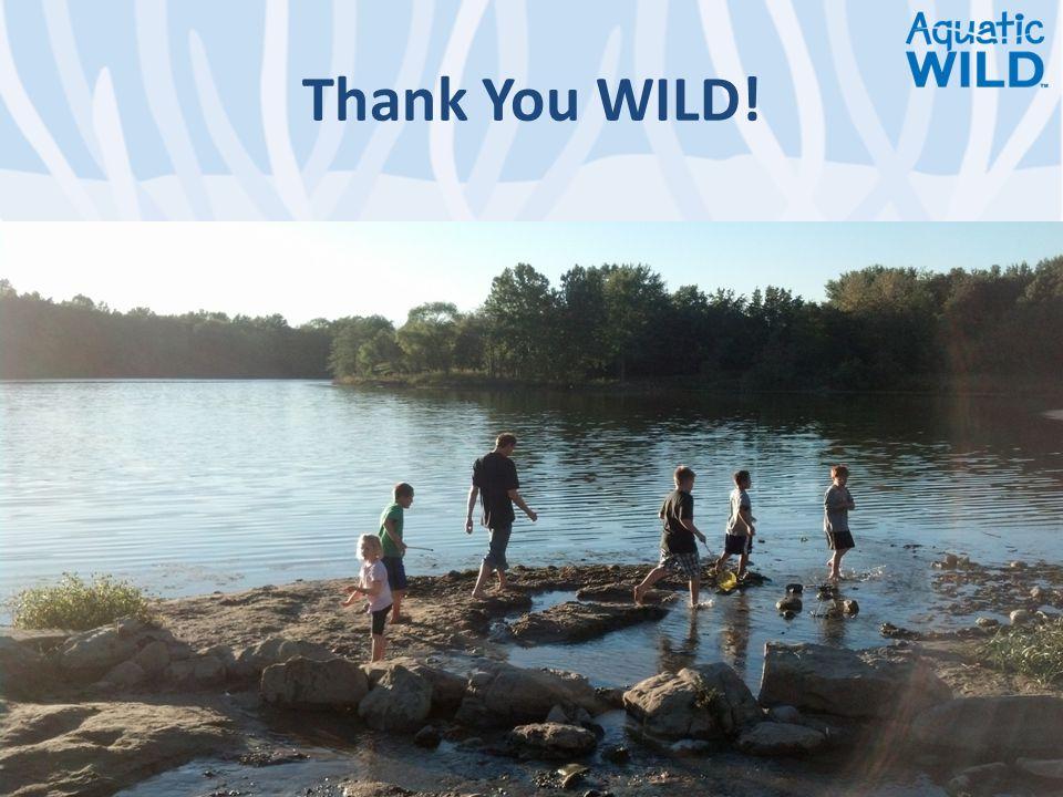Thank You WILD!