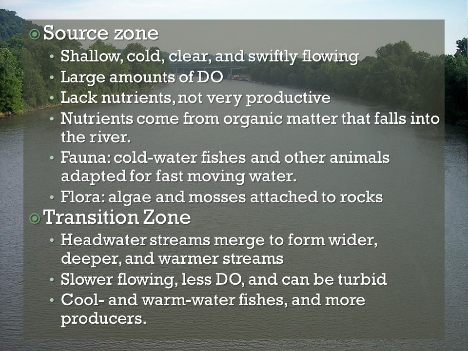  Source zone Shallow, cold, clear, and swiftly flowing Shallow, cold, clear, and swiftly flowing Large amounts of DO Large amounts of DO Lack nutrien