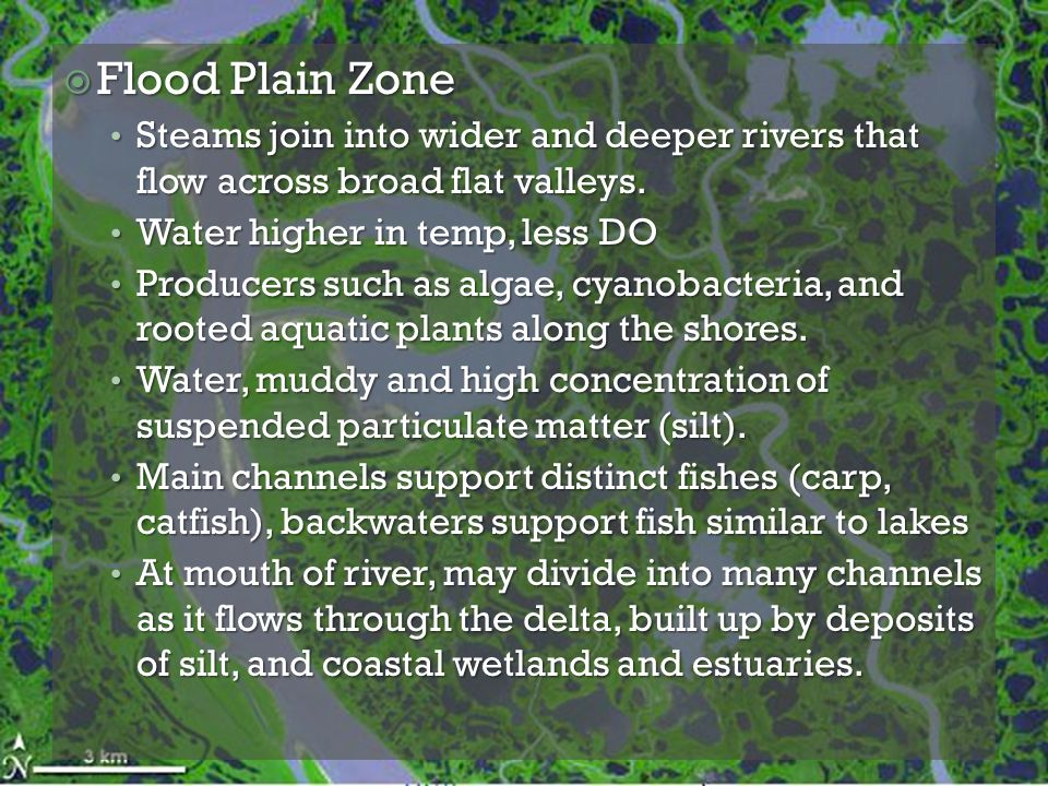  Flood Plain Zone Steams join into wider and deeper rivers that flow across broad flat valleys. Steams join into wider and deeper rivers that flow ac
