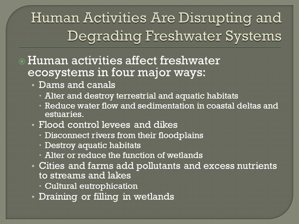  Human activities affect freshwater ecosystems in four major ways: Dams and canals  Alter and destroy terrestrial and aquatic habitats  Reduce wate
