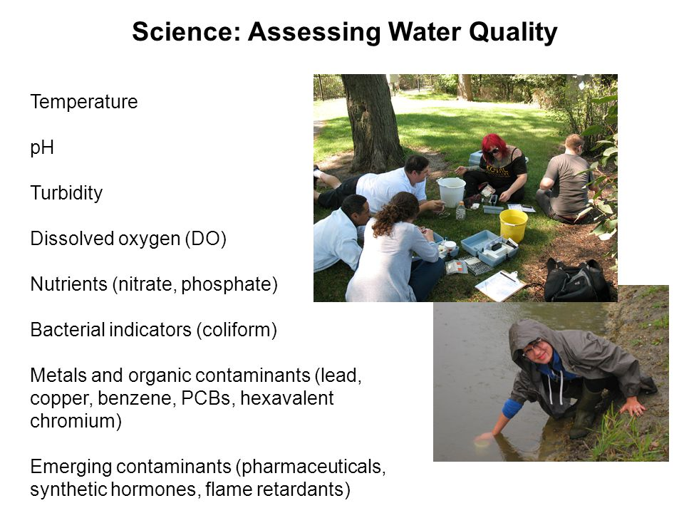 Temperature pH Turbidity Dissolved oxygen (DO) Nutrients (nitrate, phosphate) Bacterial indicators (coliform) Metals and organic contaminants (lead, c
