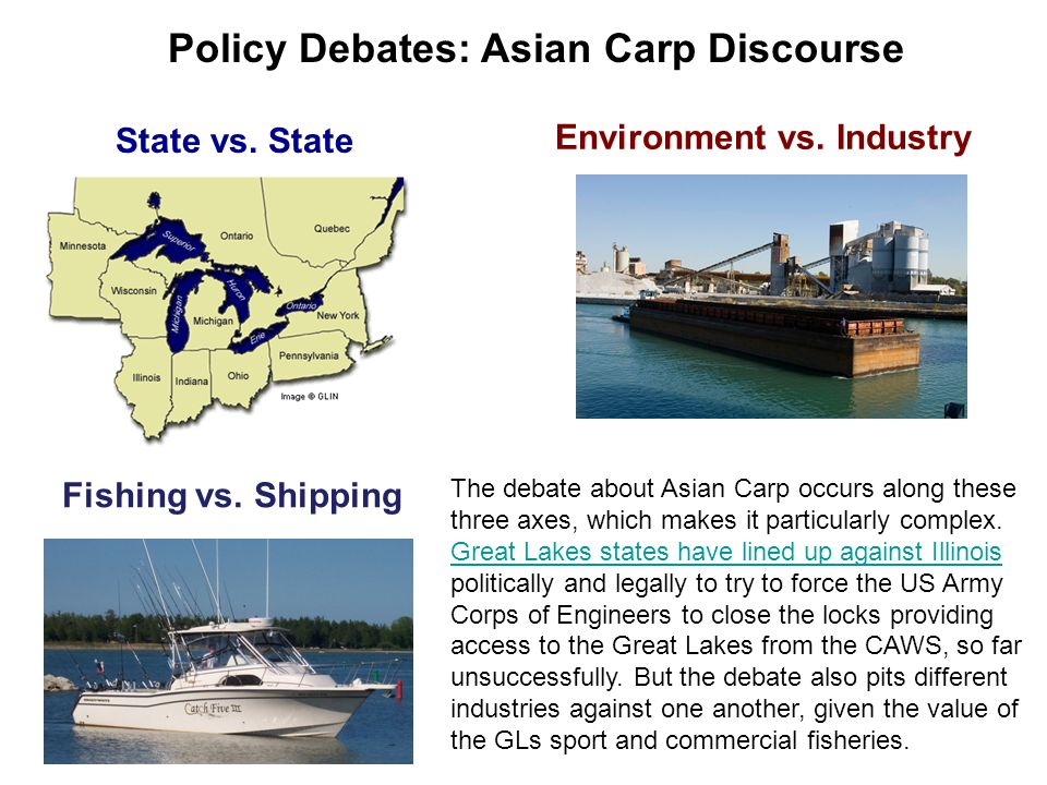 State vs. State Environment vs. Industry Fishing vs. Shipping The debate about Asian Carp occurs along these three axes, which makes it particularly c