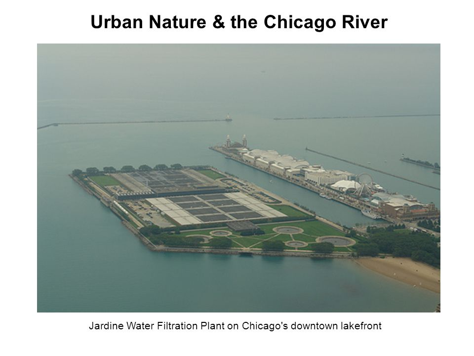 Jardine Water Filtration Plant on Chicago's downtown lakefront Urban Nature & the Chicago River