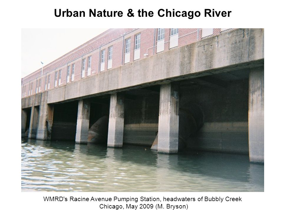 WMRD's Racine Avenue Pumping Station, headwaters of Bubbly Creek Chicago, May 2009 (M. Bryson) Urban Nature & the Chicago River