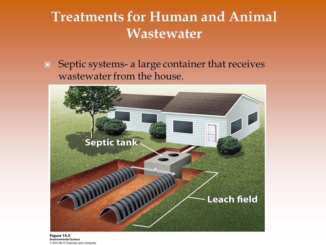 Treatments for Human and Animal Wastewater Septic systems- a large container that receives wastewater from the house.