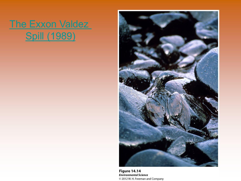 The Exxon Valdez Spill (1989)