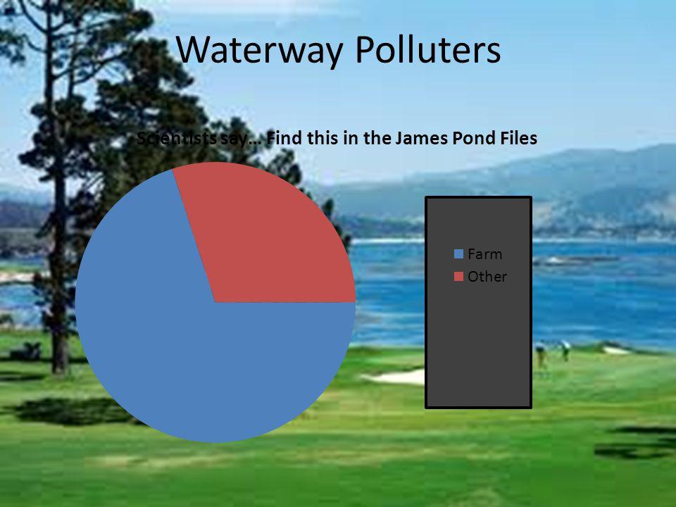 Waterway Polluters