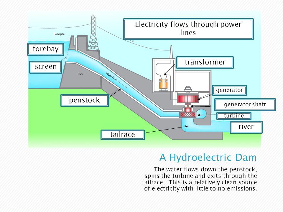 Coal plants burn coal to create electricity. The burning coal heats up a water boiler.