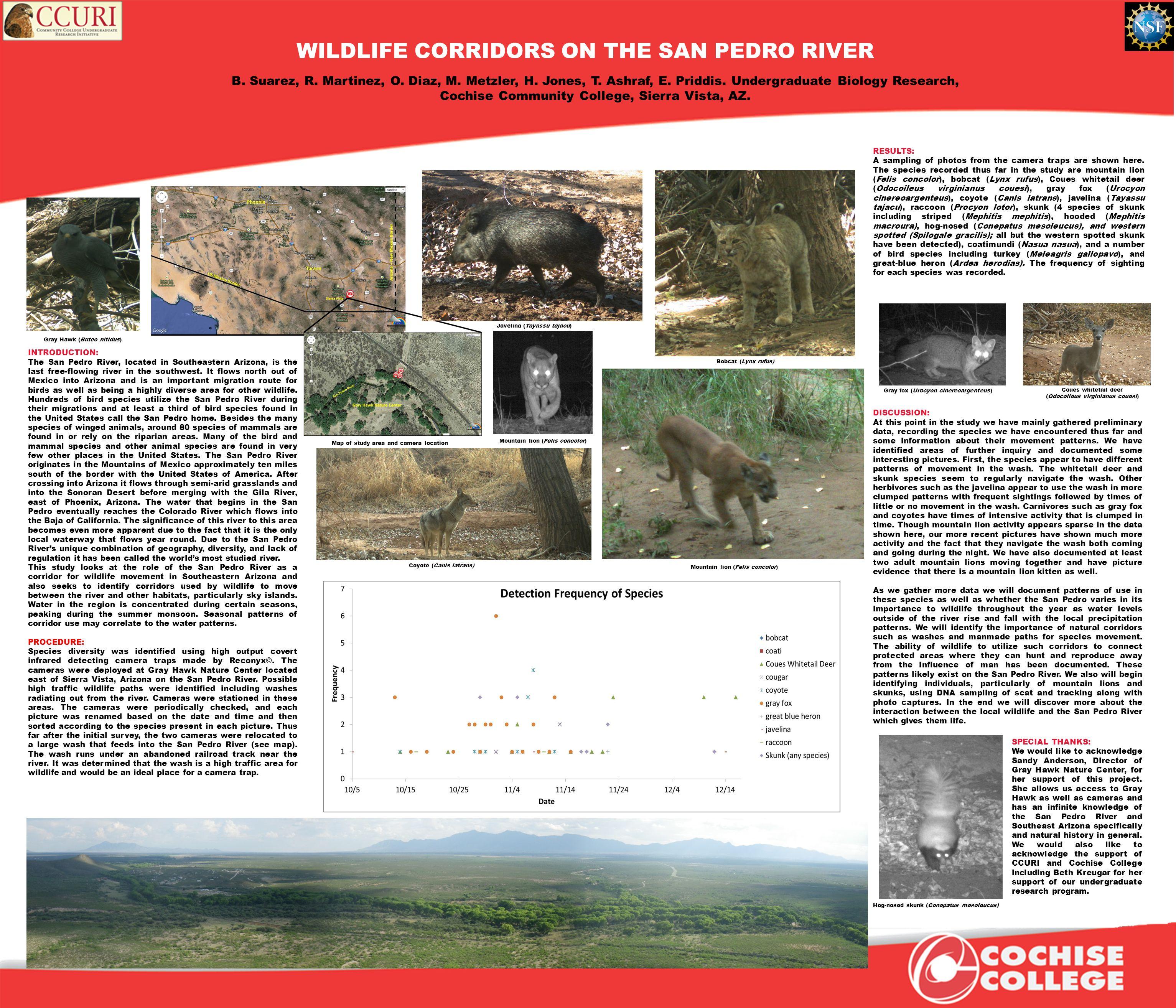 WILDLIFE CORRIDORS ON THE SAN PEDRO RIVER B. Suarez, R.