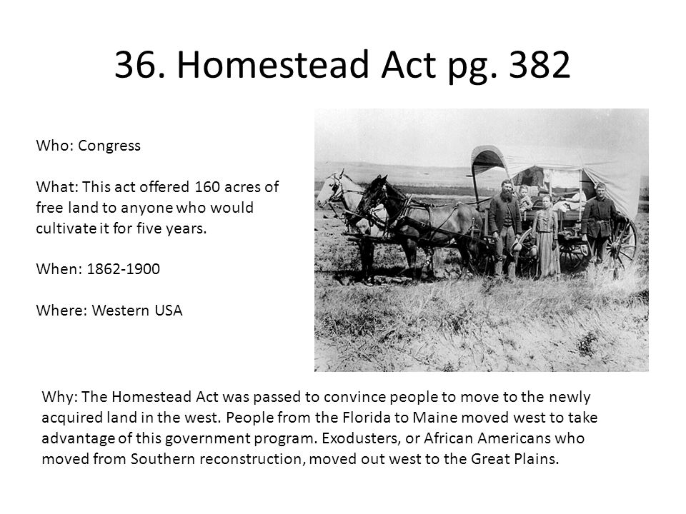 36. Homestead Act pg. 382 Who: Congress What: This act offered 160 acres of free land to anyone who would cultivate it for five years. When: 1862-1900