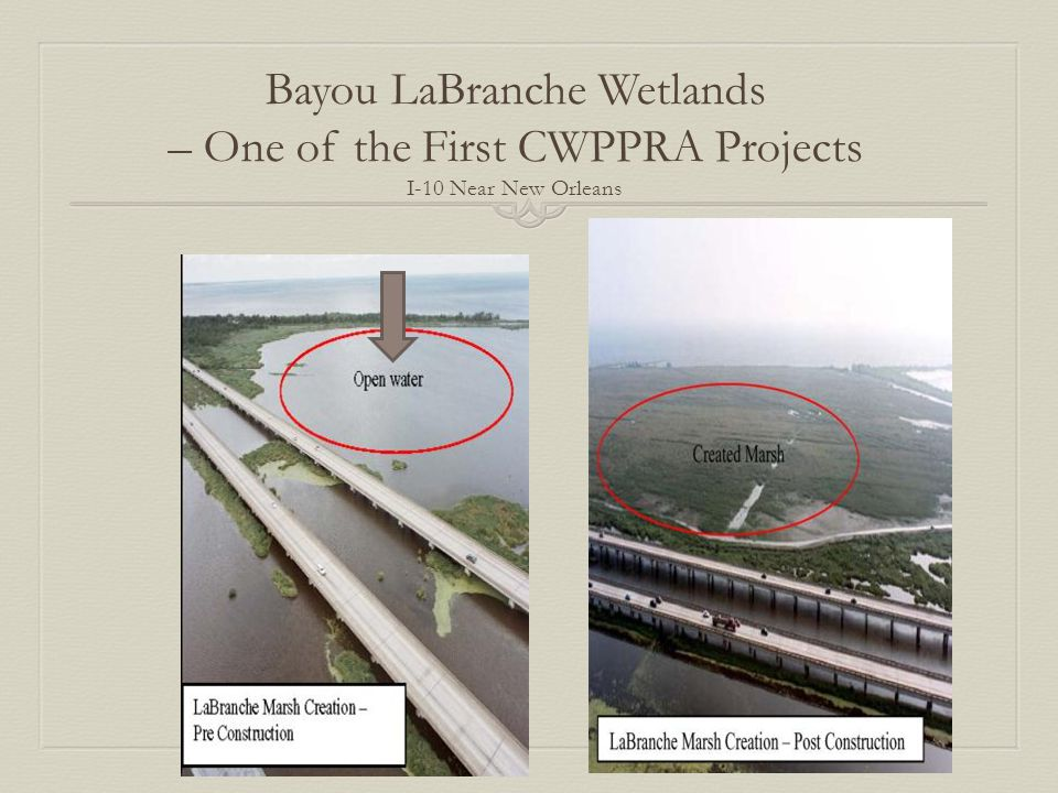 Bayou LaBranche Wetlands – One of the First CWPPRA Projects I-10 Near New Orleans