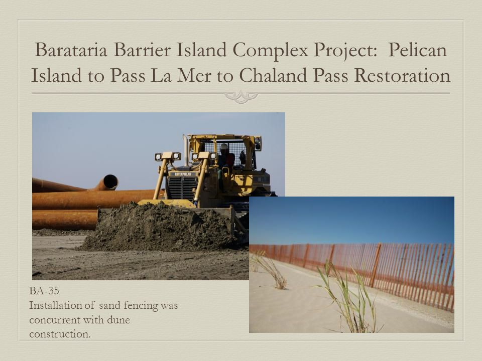 Barataria Barrier Island Complex Project: Pelican Island to Pass La Mer to Chaland Pass Restoration BA-35 Installation of sand fencing was concurrent with dune construction.