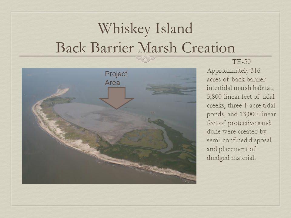 Whiskey Island Back Barrier Marsh Creation TE-50 Approximately 316 acres of back barrier intertidal marsh habitat, 5,800 linear feet of tidal creeks, three 1-acre tidal ponds, and 13,000 linear feet of protective sand dune were created by semi-confined disposal and placement of dredged material.