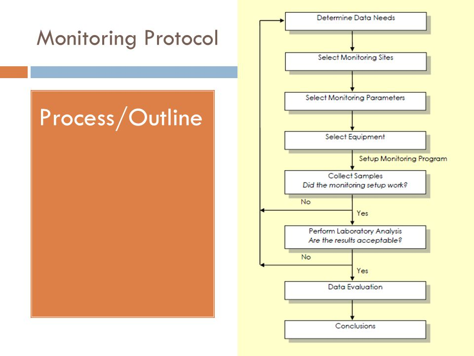 Monitoring Protocol Process/Outline