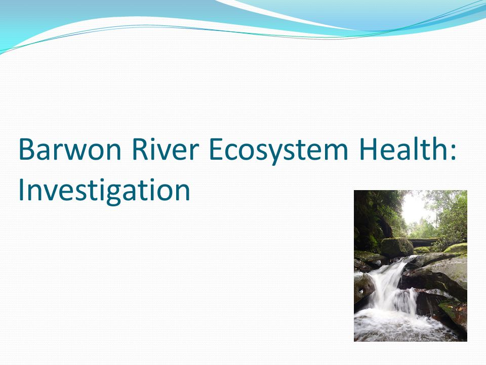 Barwon River Ecosystem Health: Investigation