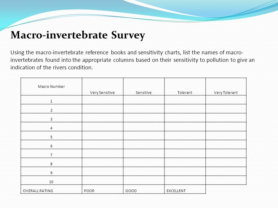 Macro Number Very SensitiveSensitiveTolerantVery Tolerant 1 2 3 4 5 6 7 8 9 10 OVERALL RATINGPOORGOODEXCELLENT Macro-invertebrate Survey Using the macro-invertebrate reference books and sensitivity charts, list the names of macro- invertebrates found into the appropriate columns based on their sensitivity to pollution to give an indication of the rivers condition.