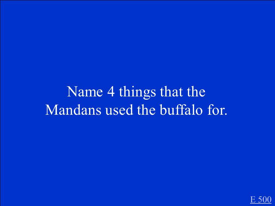 Buffalo E 400