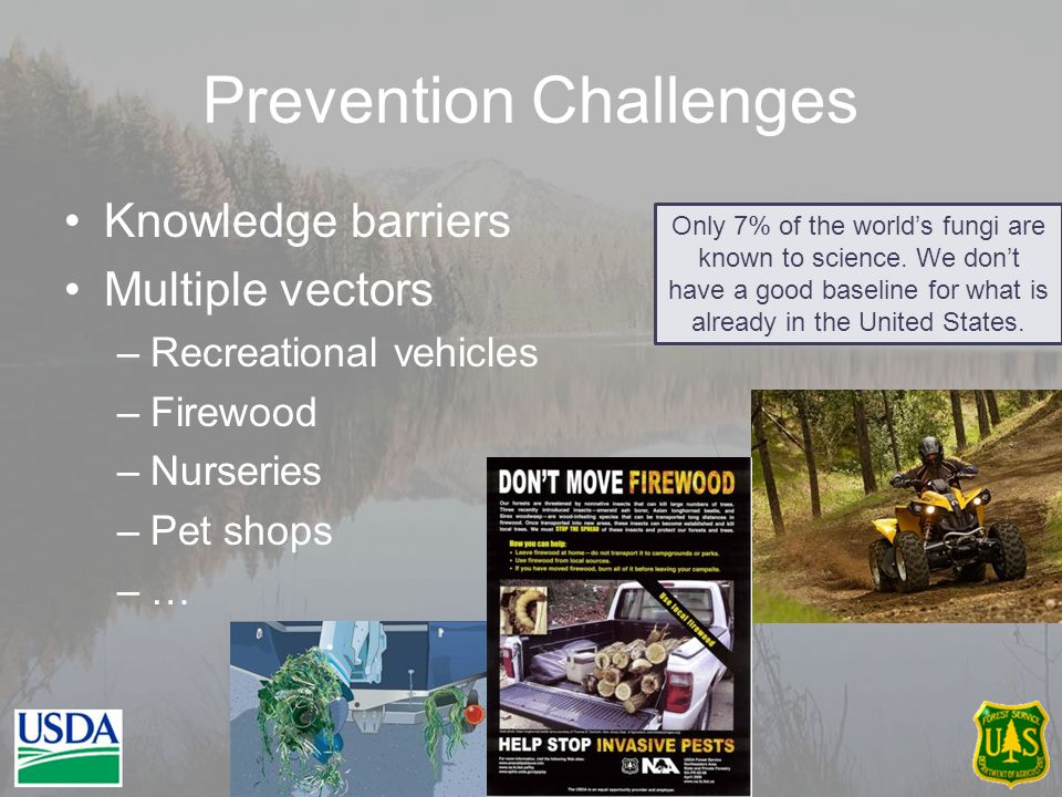 Prevention Challenges Knowledge barriers Multiple vectors –Recreational vehicles –Firewood –Nurseries –Pet shops –… 20 Only 7% of the world's fungi are known to science.
