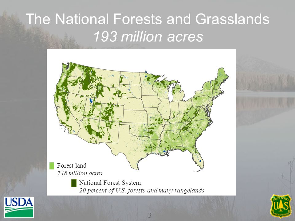 America's Forests 748 million acres 4 Through our State and Private Forestry staff, the Forest Service contributes to sustainable forest management nationwide.