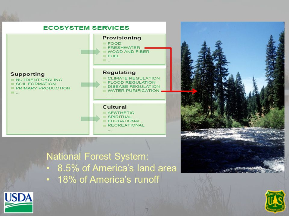7 National Forest System: 8.5% of America's land area 18% of America's runoff