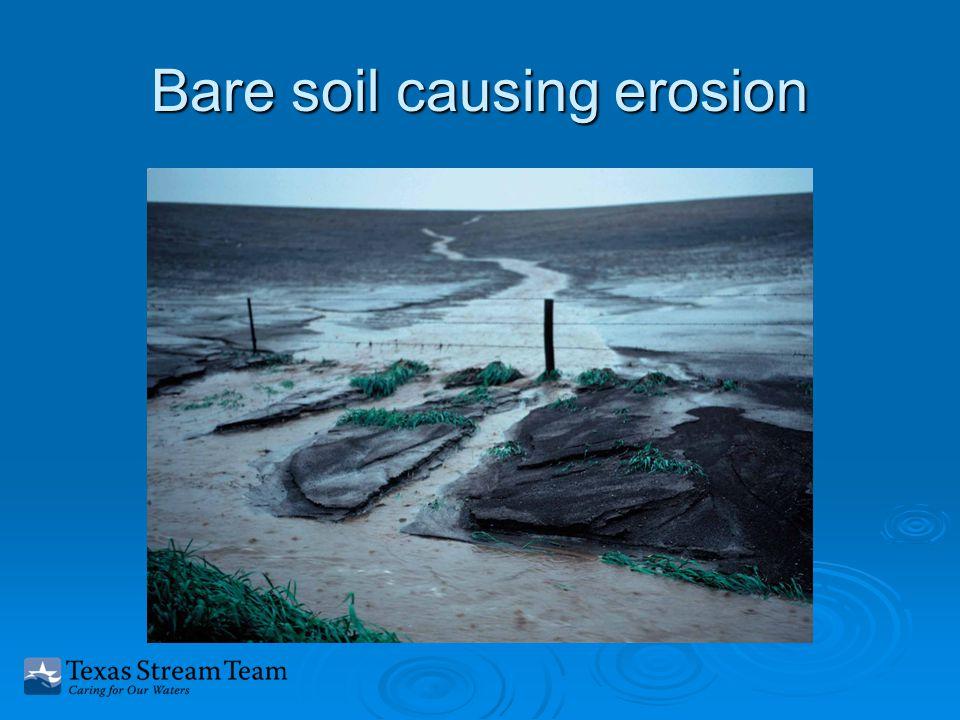 Bare soil causing erosion