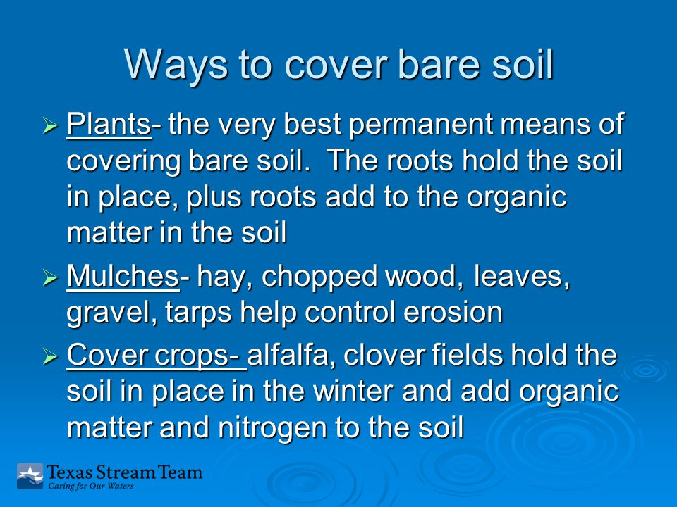 Ways to cover bare soil  Plants- the very best permanent means of covering bare soil.
