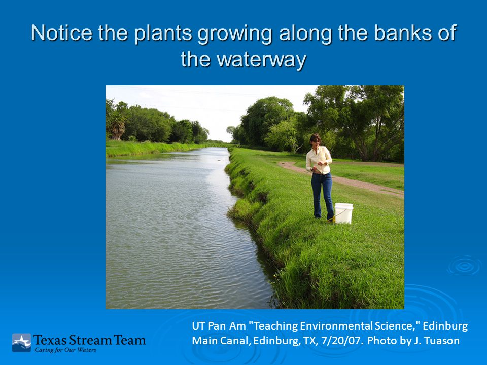 Notice the plants growing along the banks of the waterway UT Pan Am Teaching Environmental Science, Edinburg Main Canal, Edinburg, TX, 7/20/07.