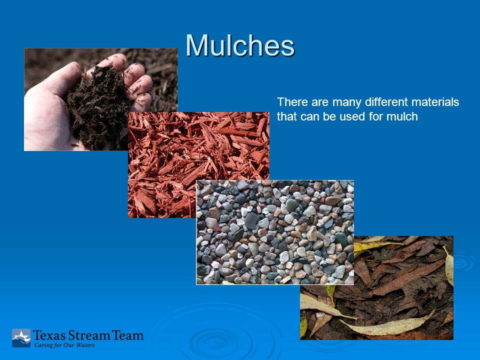 Mulches There are many different materials that can be used for mulch
