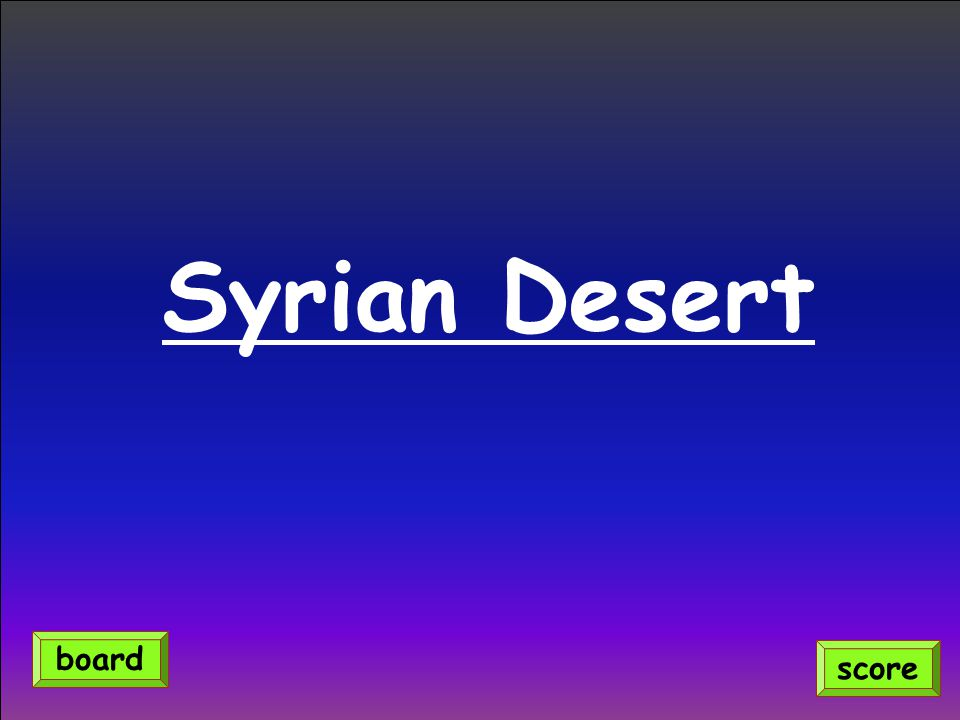 Syrian Desert score board