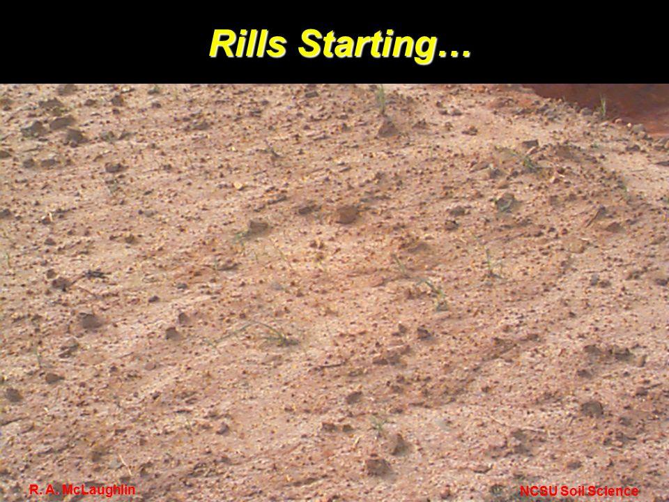 Rills Starting… NCSU Soil Science R. A. McLaughlin