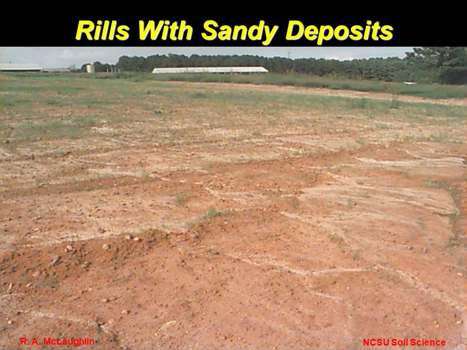 Rills With Sandy Deposits NCSU Soil Science R. A. McLaughlin
