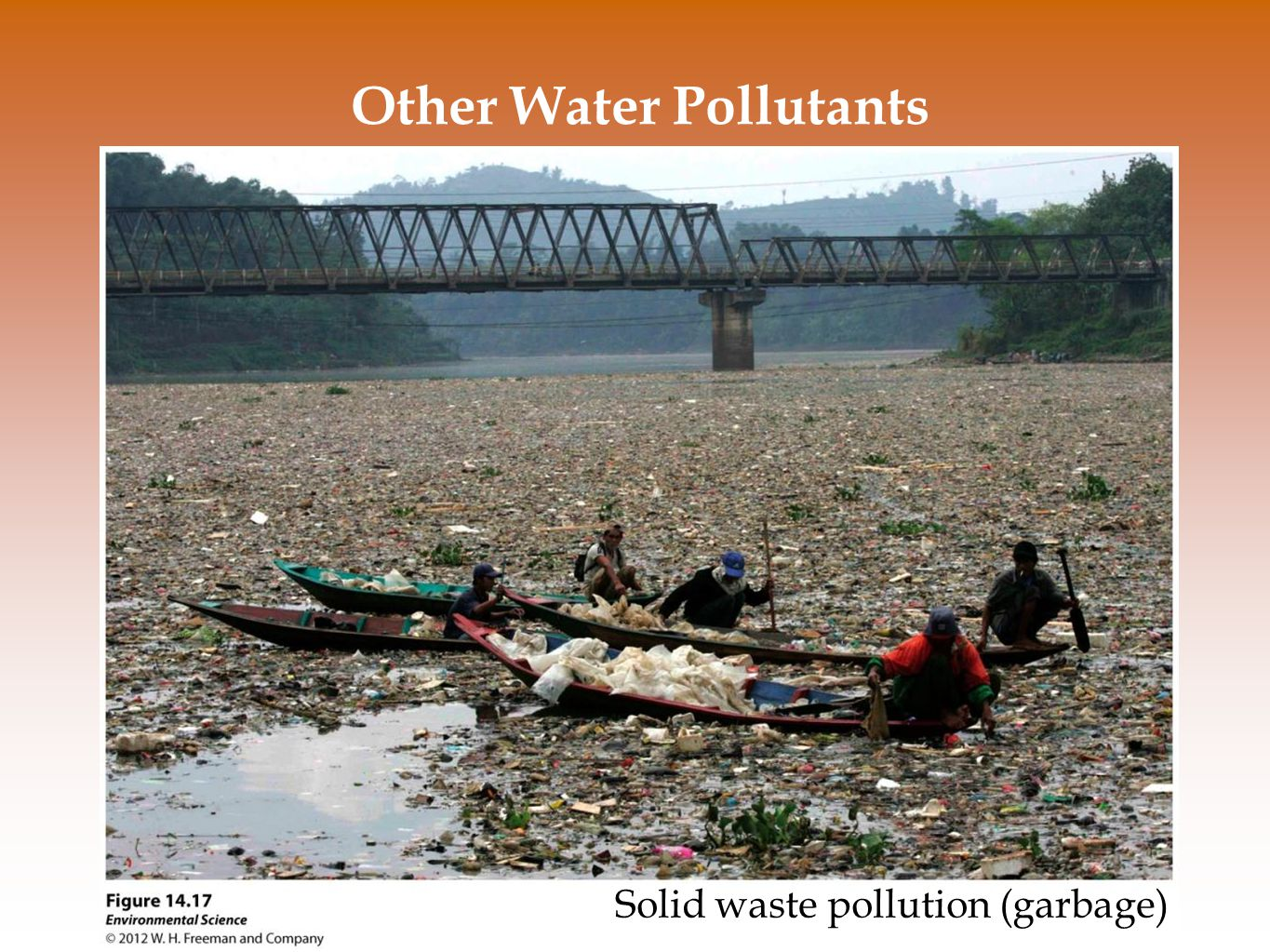 Other Water Pollutants Solid waste pollution (garbage)