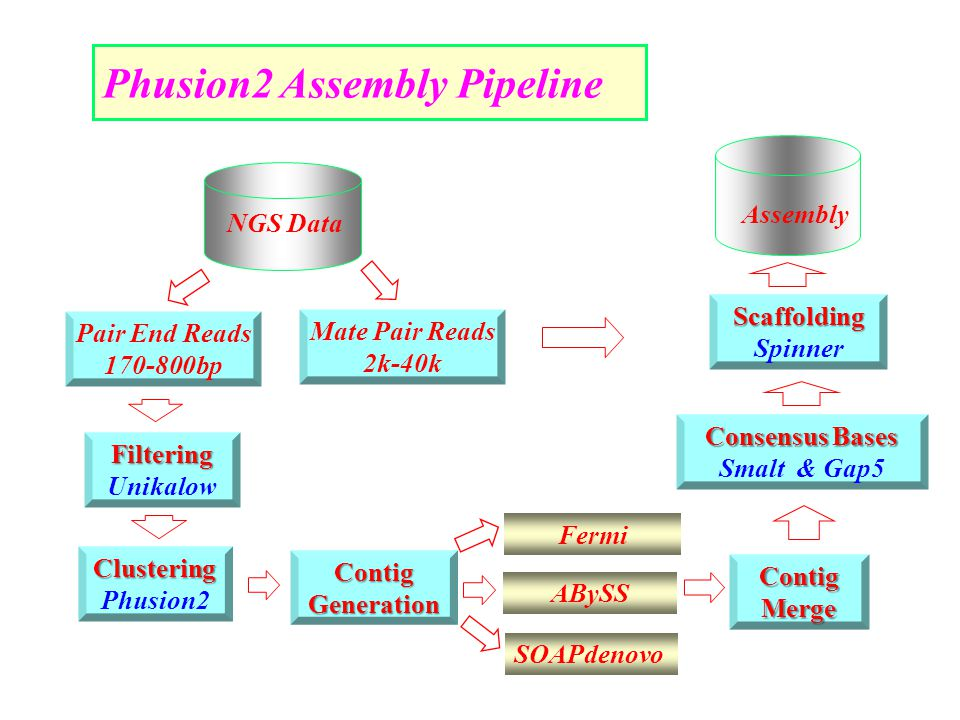 Phusion2 Assembly Pipeline NGS Data Assembly Contig Merge Filtering Unikalow Clustering Phusion2 Contig Generation Scaffolding Spinner Consensus Bases Smalt & Gap5 SOAPdenovo Fermi ABySS Mate Pair Reads 2k-40k Pair End Reads 170-800bp