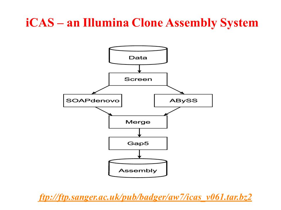 ftp://ftp.sanger.ac.uk/pub/badger/aw7/icas_v061.tar.bz2 iCAS – an Illumina Clone Assembly System