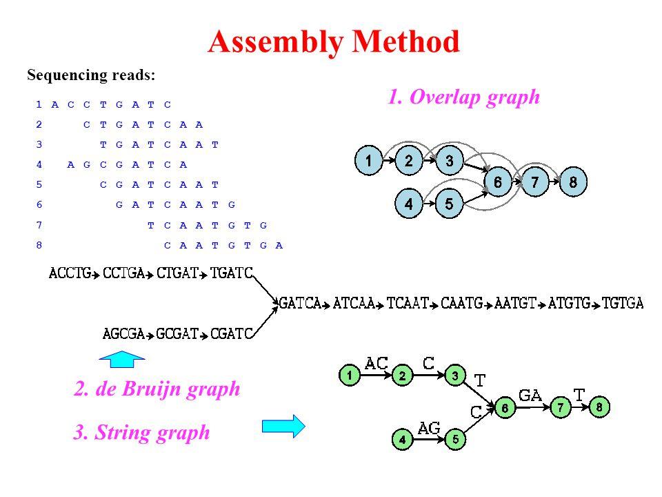 Assembly Method 1ACCTGATC 2CTGATCAA 3TGATCAAT 4AGCGATCA 5CGATCAAT 6GATCAATG 7TCAATGTG 8CAATGTGA 1.