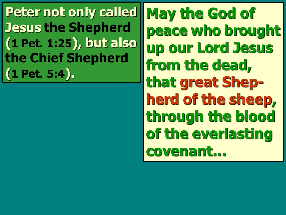 May the God of peace who brought up our Lord Jesus from the dead, that great Shep- herd of the sheep, through the blood of the everlasting covenant… P