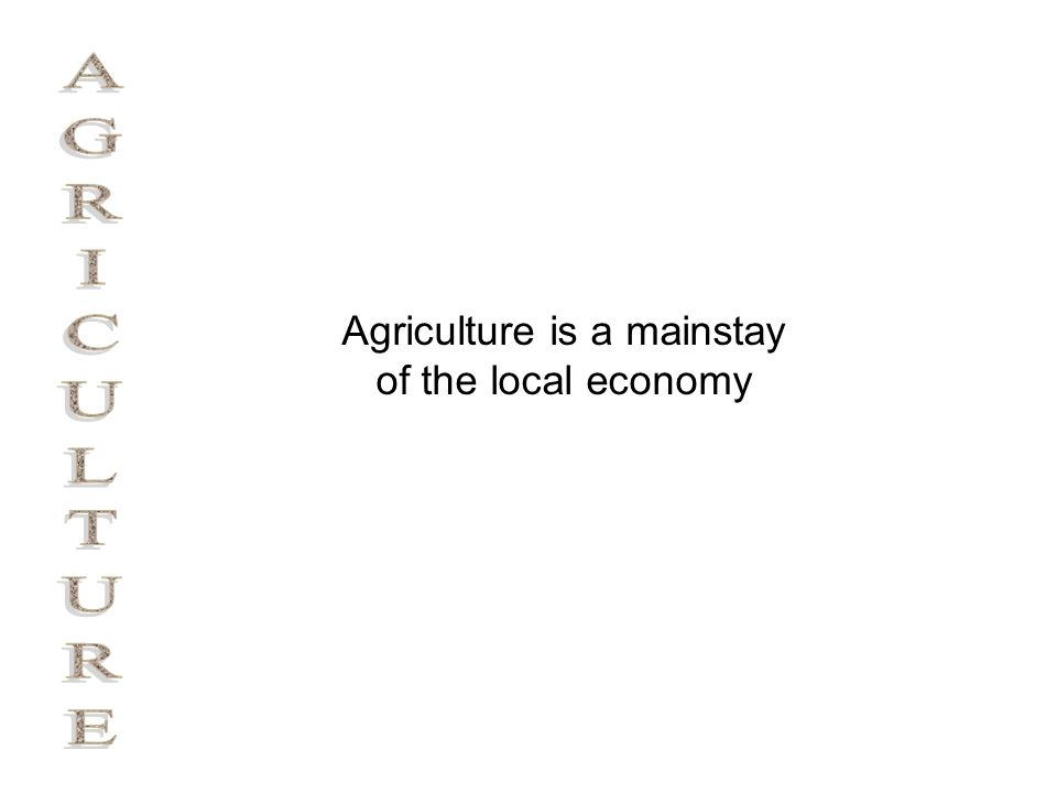 Agriculture is a mainstay of the local economy