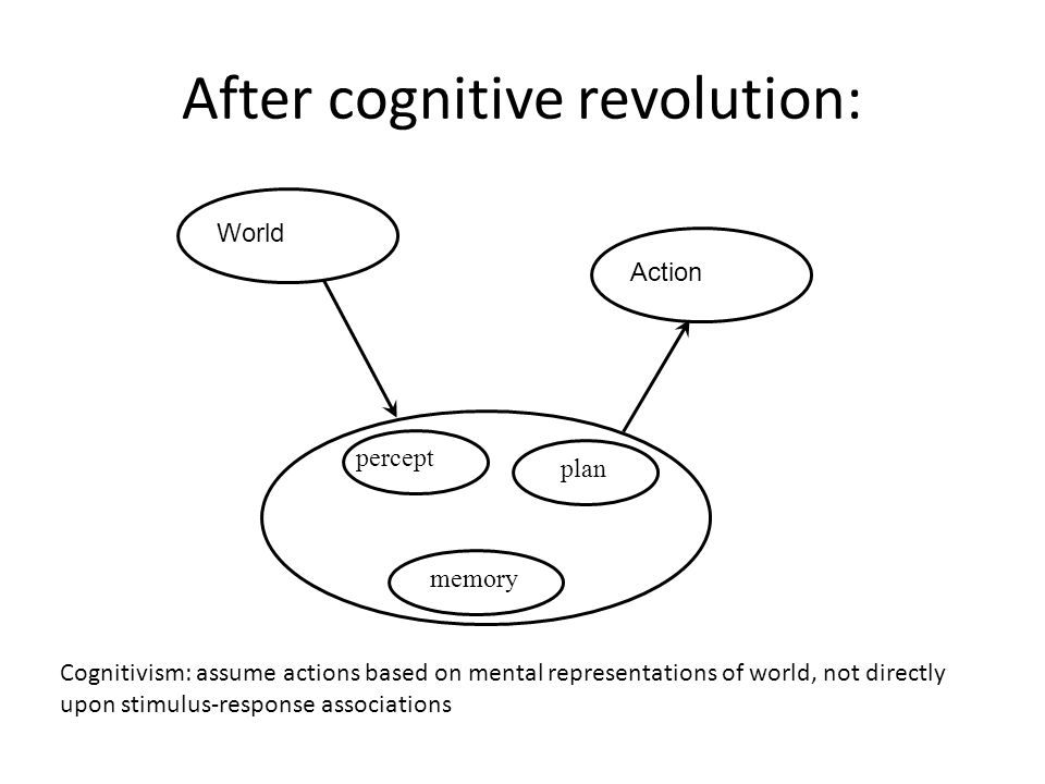 After cognitive revolution: WorldAction Cognitivism: assume actions based on mental representations of world, not directly upon stimulus-response asso