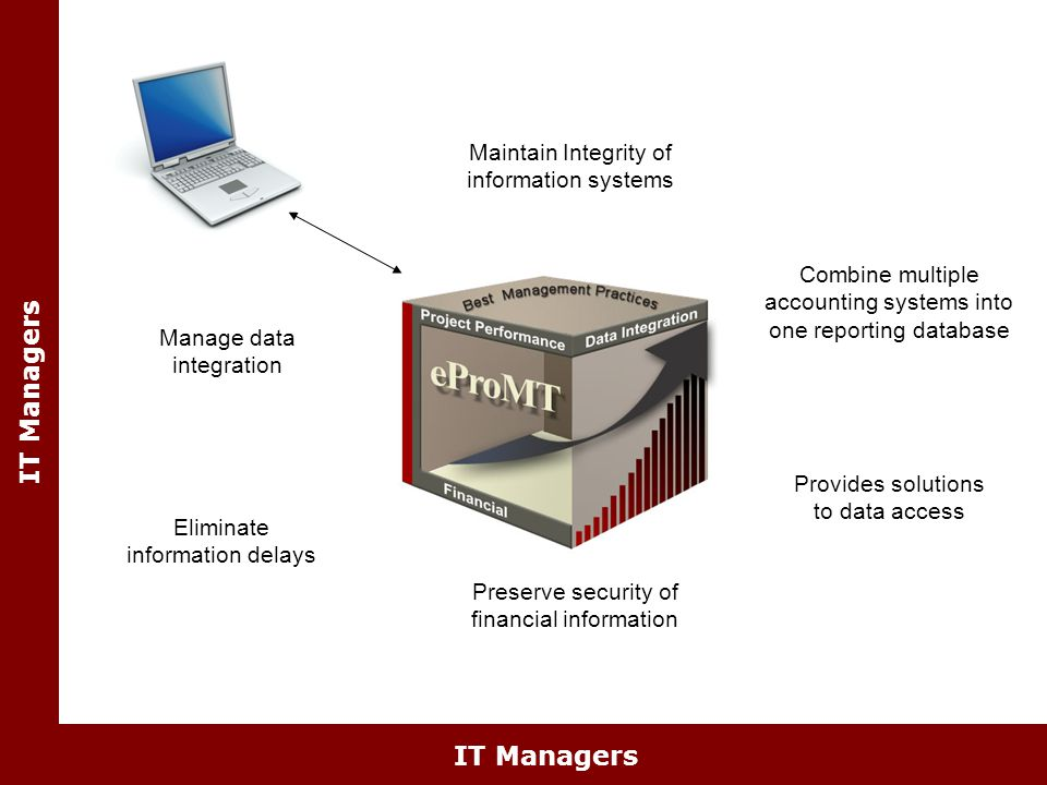 IT Managers Provides solutions to data access Maintain Integrity of information systems Combine multiple accounting systems into one reporting database Preserve security of financial information Eliminate information delays Manage data integration