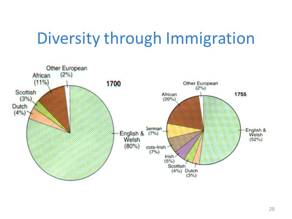 Diversity through Immigration 28