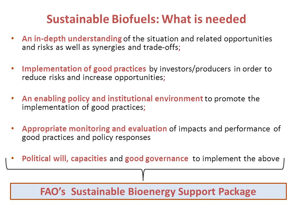 Sustainable Biofuels: What is needed An in-depth understanding of the situation and related opportunities and risks as well as synergies and trade-offs; Implementation of good practices by investors/producers in order to reduce risks and increase opportunities; An enabling policy and institutional environment to promote the implementation of good practices; Appropriate monitoring and evaluation of impacts and performance of good practices and policy responses Political will, capacities and good governance to implement the above FAO's Sustainable Bioenergy Support Package