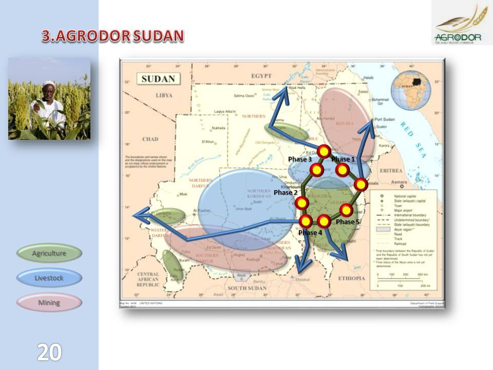 Mining Livestock Agriculture Phase 1 Phase 3 Phase 2 Phase 5 Phase 4