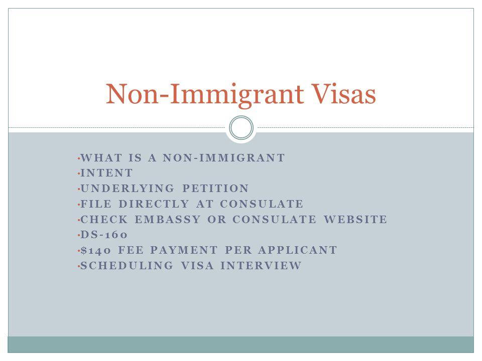 PURPOSE OF VISA ACADEMIC CREDENTIALS EMPLOYER-EMPLOYEE RELATIONSHIP JOB DUTIES REVOCATION The Non-Immigrant Visa Interview