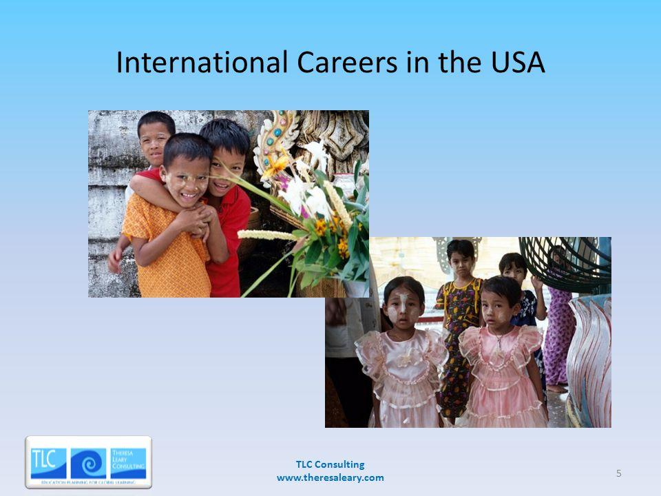 International Careers in the USA TLC Consulting www.theresaleary.com 3/28/20075