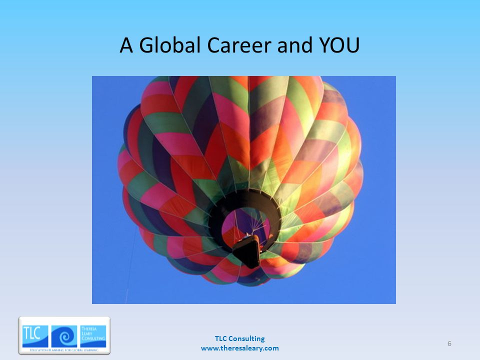 A Global Career and YOU TLC Consulting www.theresaleary.com 3/28/20076