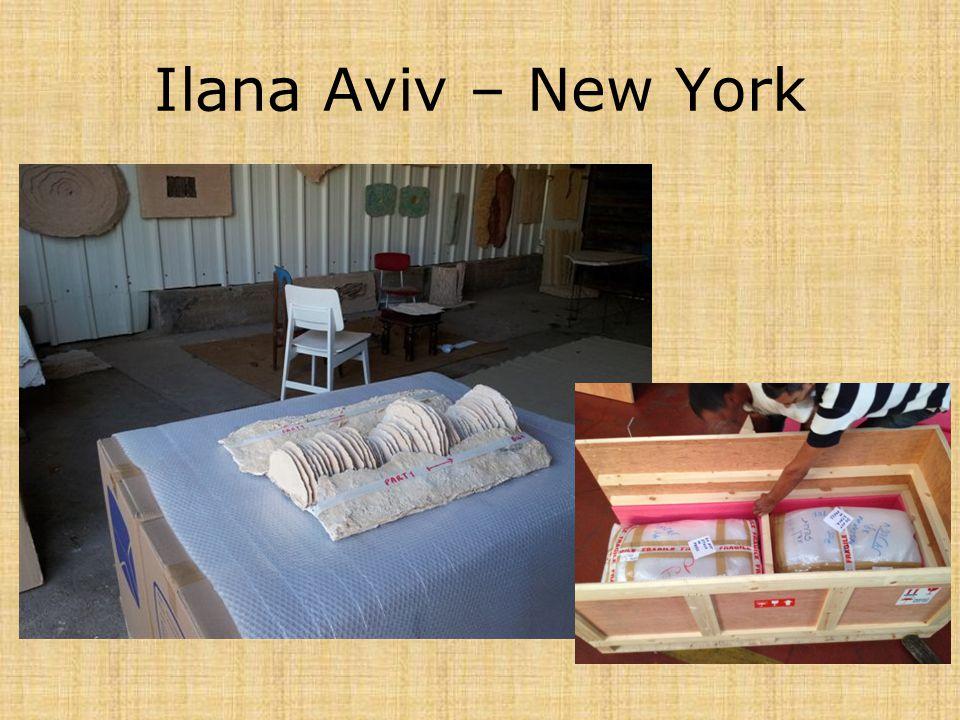 Ilana Aviv – New York
