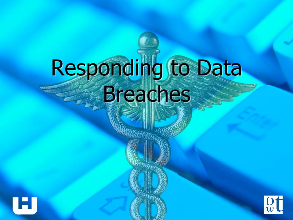 Responding to Data Breaches