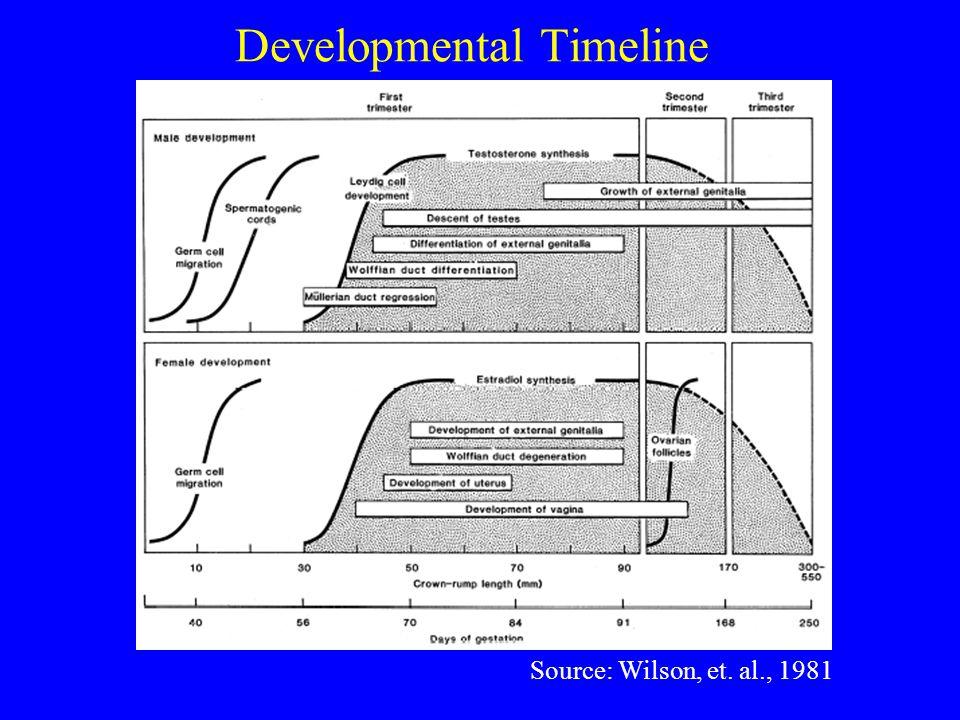 Mechanisms of Endocrine Disruption Source: McLachlan, 2001